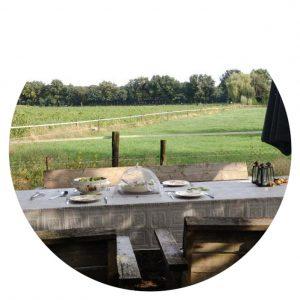 Ontbijten in de tuin, B&B Wachtpost 29, Volkel